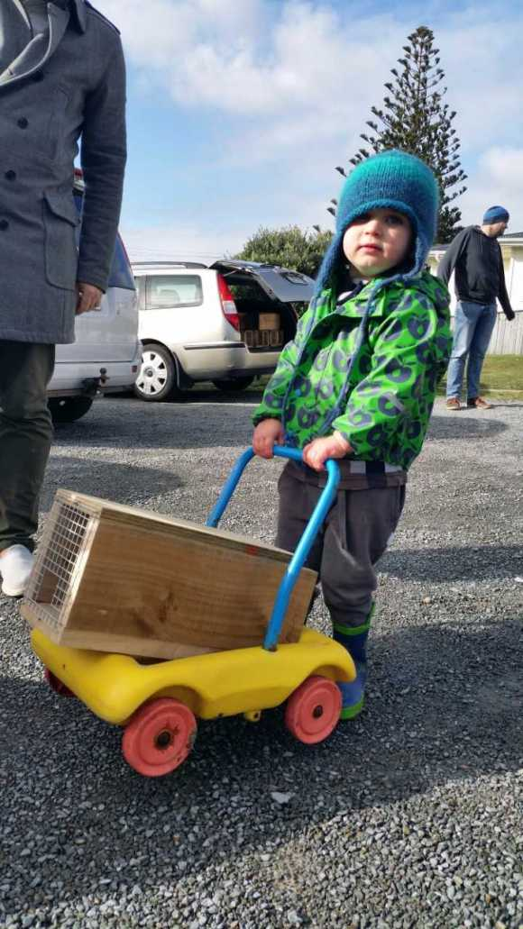 A young trapper transports his new equipment home.
