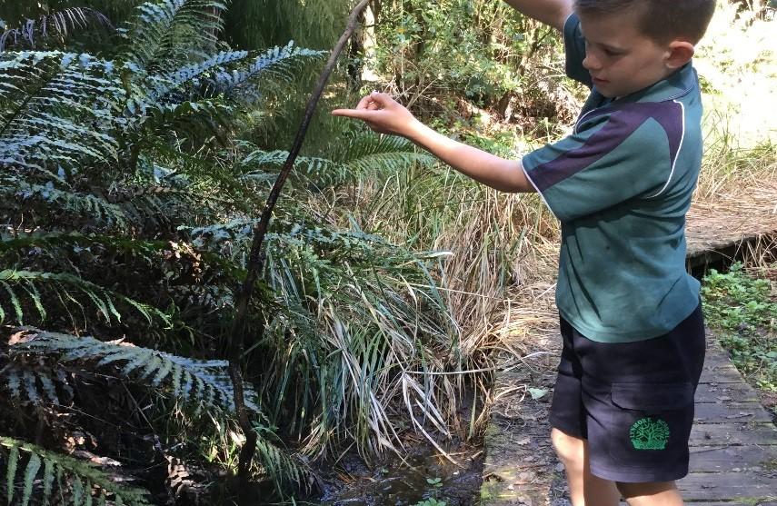 Blog: How to be a Habitat Hero