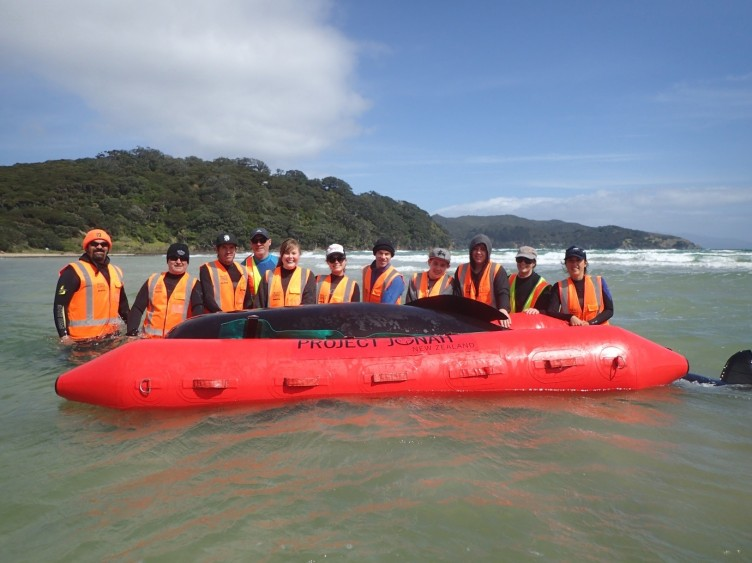 Project Jonah share knowledge with Aotea/Great Barrier Island locals