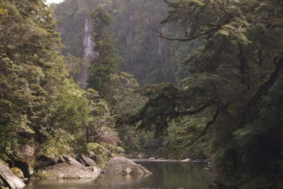 Pororari River. Photo: Tom Hopkins ©.