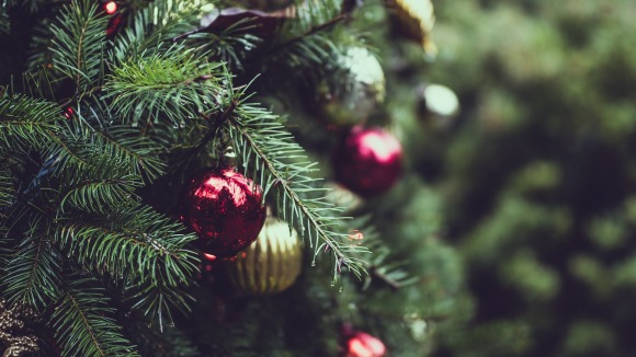 Christmas tree. Photo: Pixabay