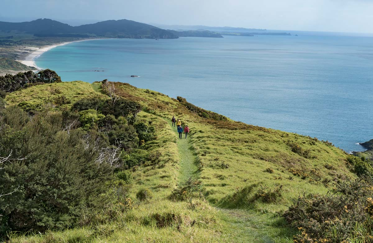 Blog: The ultimate ten-day Northland, New Zealand itinerary