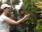 DOC and Auckland Botanic Gardens staff on Great Barrier Island/Aotea.