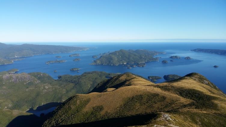 Fiordland Kiwi Diaries: Resolution Island Trapping