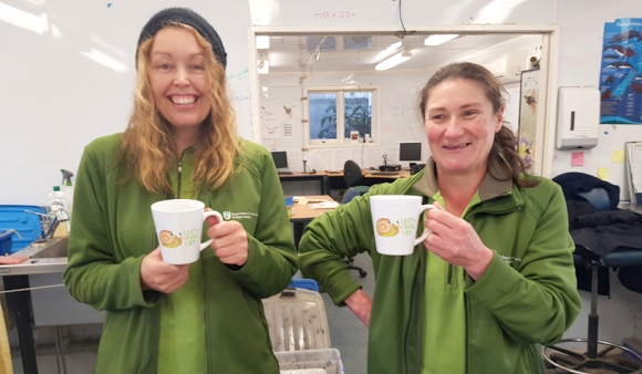 Crazy snail ladies (the cups prove it!) Sarah and Lisa – two thirds of the dedicated snail species saving crew.