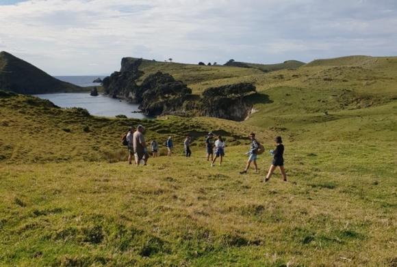 Volunteers helping to eradicate Argentine ants from Great Mercury Island. 📷: Pete Corson.